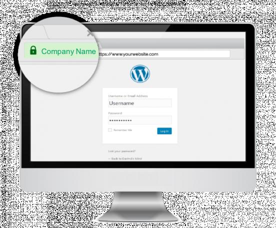 website security, ssl, ssl certificate, secure sockets layer